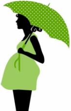 Démarches administratives de la grossesse, récapitulatif