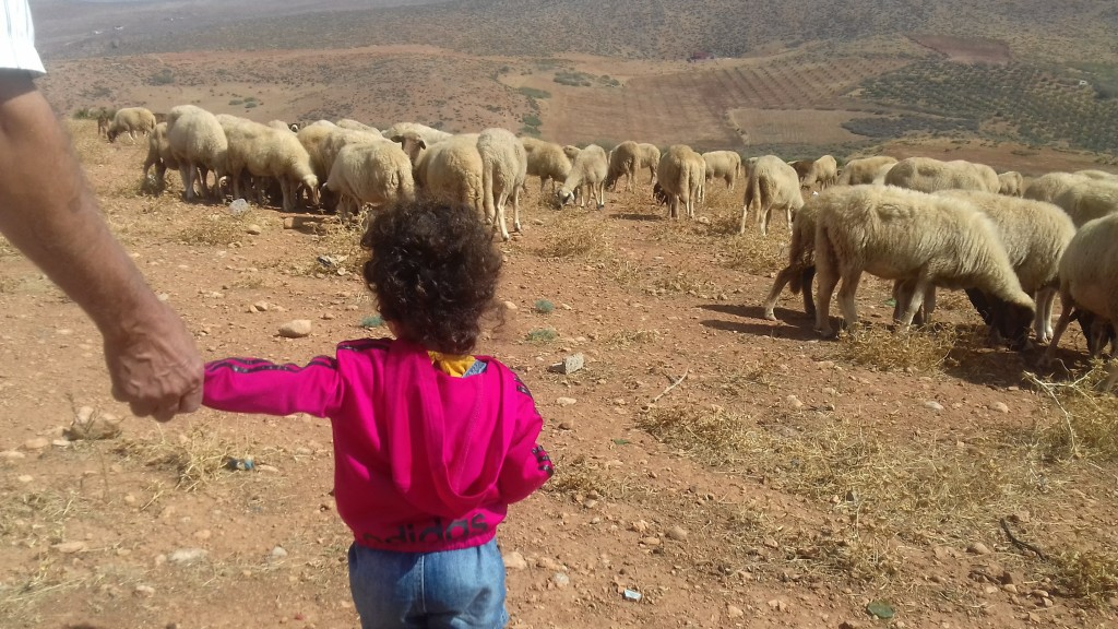 Mimi et maman étaient en vacances au Maroc